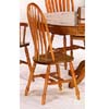 Philadelphia Windsor Chair 5388A (CO)