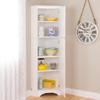 Corner Storage Cabinet WSCC-0605-1(PPFS)
