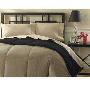 Adore Solid Color Comforter (AP)