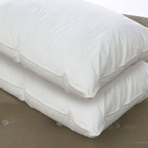 Set Of 4 Down Alternative Standard Pillow (RPT)